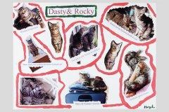 08-01_Dasty_und_Rocky